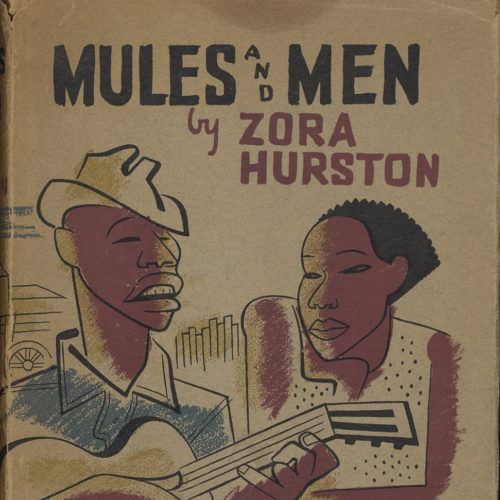 Cover of book titled Mules and Men