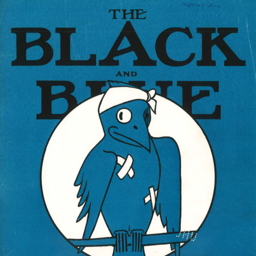 Cover of book titled Black and Blue Jay